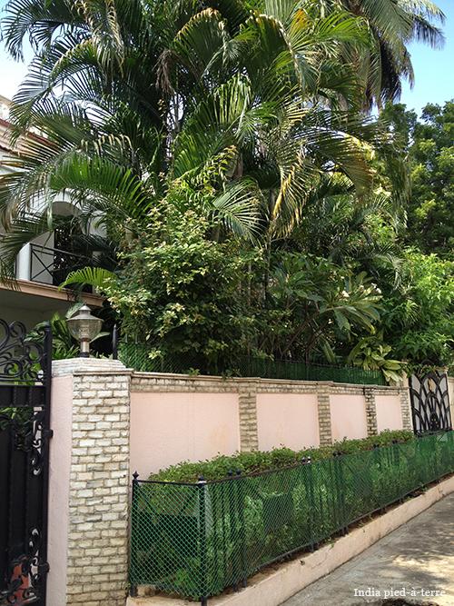 Chennai Garden