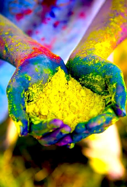 Handfuls of Holi Powder