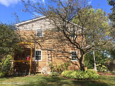 PaintShaver Pro on Cedar Siding