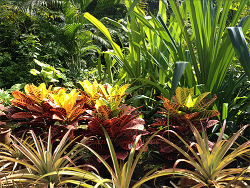 Amethyst Garden Chennai