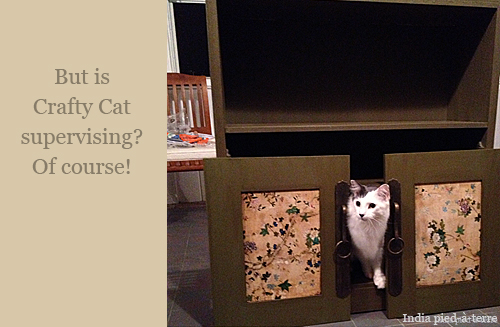 Chaai the Crafty Cat is Always Supervising